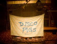 Third recommission award goes to Disco Pigs